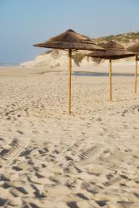 Beachscenebyartur84